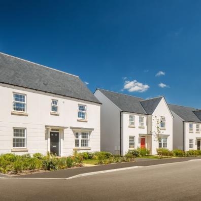 Barratt and David Wilson Homes