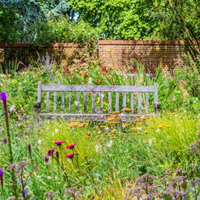 property with wild meadows and veg patches garden