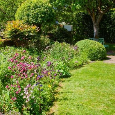 Summer English Garden